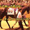 65回 裏 – 競走馬タイフールジンマ参戦?